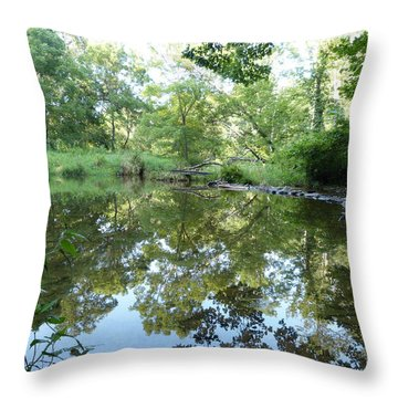 Reflections Of Beetree Run Throw Pillow by Donald C Morgan