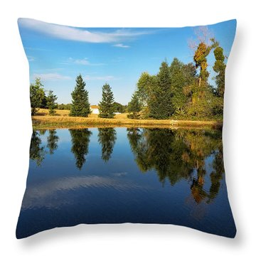 Reflections Of Life Throw Pillow