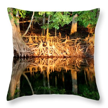 Reflections Of Our Roots Throw Pillow by Lora Wood