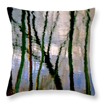 Reflections Of The Forrest Throw Pillow by Gillis Cone