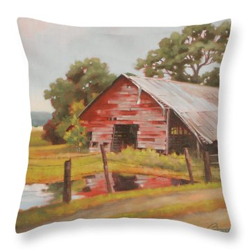 Reflections Of The Past Throw Pillow by Todd Baxter