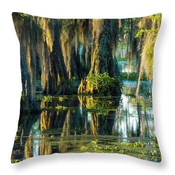 Reflections Of The Times Throw Pillow