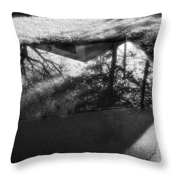 Reflections Of Two Loves Throw Pillow by Jeanette O'Toole