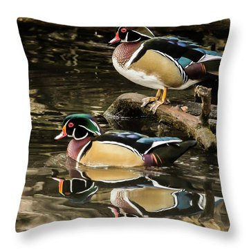 Reflections Of You And Me Wildlife Art By Kaylyn Franks Throw Pillow