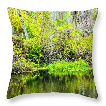 Throw Pillow featuring the photograph Reflections On A Beautiful Day by Madeline Ellis