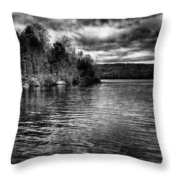 Reflections On Limekiln Lake Throw Pillow by David Patterson