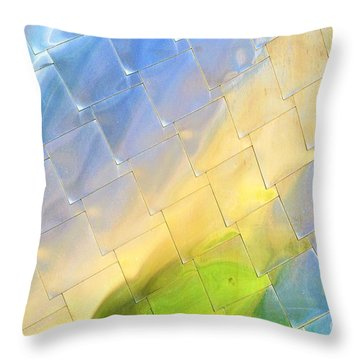 Reflections On Peter B. Lewis Building, Cleveland Throw Pillow
