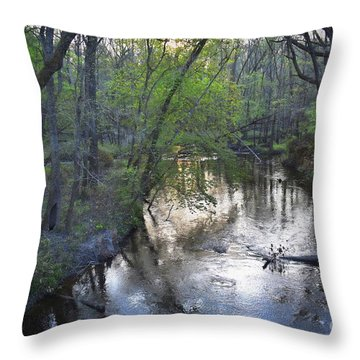 Throw Pillow featuring the photograph Reflections On The Congaree Creek by Skip Willits