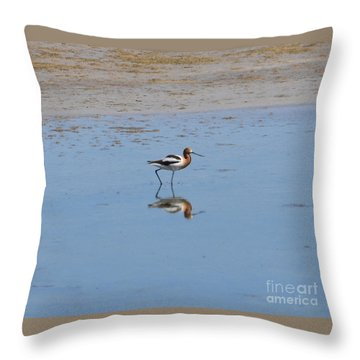 Throw Pillow featuring the photograph Reflections On The Great Salt Lake by Dorrene BrownButterfield