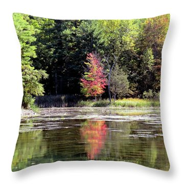 Reflections On The Rift Throw Pillow