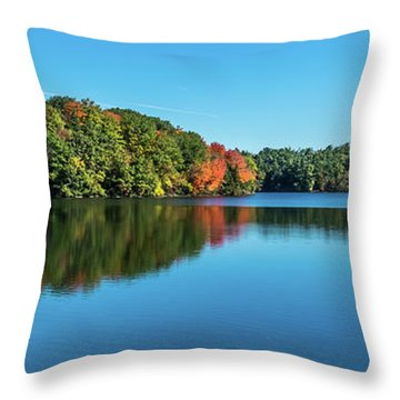 Reflections Pano Throw Pillow