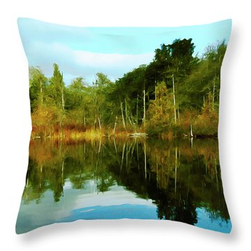Throw Pillow featuring the digital art Reflections by Timothy Hack