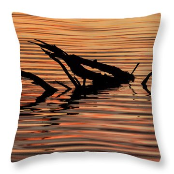 Throw Pillow featuring the photograph Reflective Abstract by Louise Lindsay