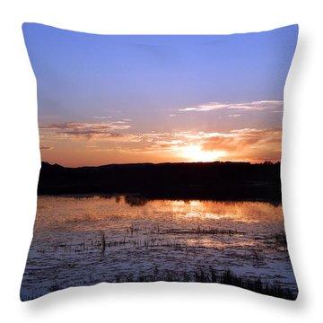 Reflective Calm Throw Pillow