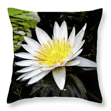 Reflective Lily Throw Pillow