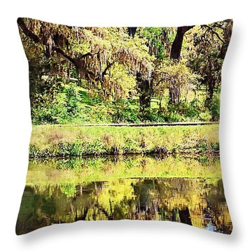 Throw Pillow featuring the photograph Reflective Live Oaks by Donna Bentley