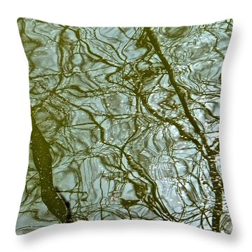 Throw Pillow featuring the photograph Reflets Feeriques 1 by Marc Philippe Joly