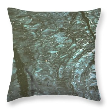 Throw Pillow featuring the photograph Reflets Feeriques 2 by Marc Philippe Joly
