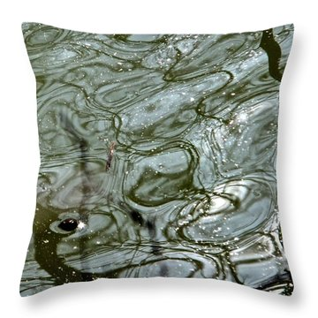 Throw Pillow featuring the photograph Reflets Feeriques 5 by Marc Philippe Joly