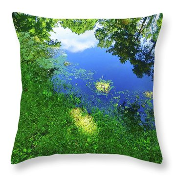 Reflex One Throw Pillow