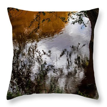 Refraction And Reflection Throw Pillow