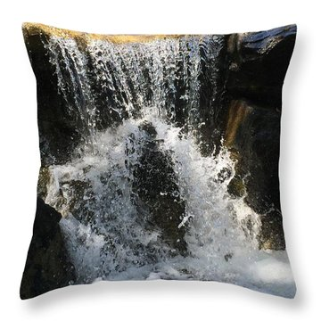 Refresh Throw Pillow by Russell Keating