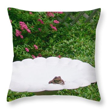 Throw Pillow featuring the digital art Refreshing by Barbara S Nickerson