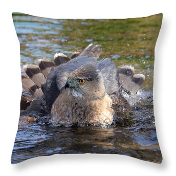 Throw Pillow featuring the photograph Refreshing Bath by Doris Potter