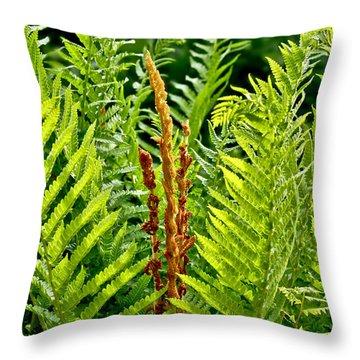 Refreshing Fern In The Woodland Garden Throw Pillow