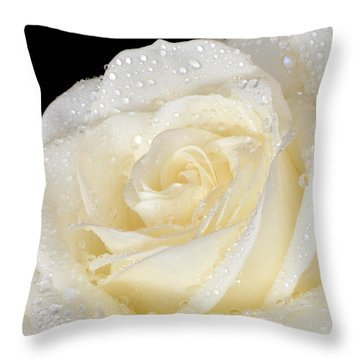 Refreshing Ivory Rose Throw Pillow