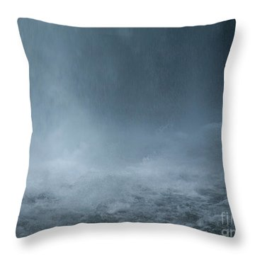 Refreshing Throw Pillow by Shari Nees