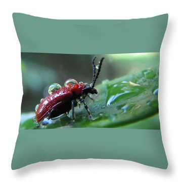 Refreshing Shower_4232 Throw Pillow