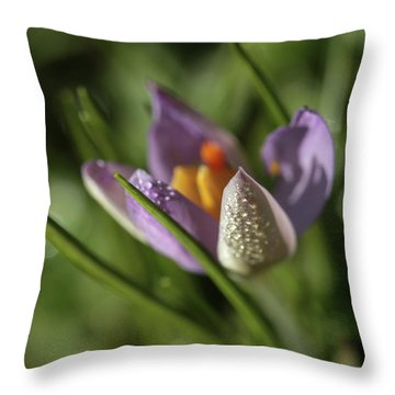 Throw Pillow featuring the photograph Refreshments  by Connie Handscomb
