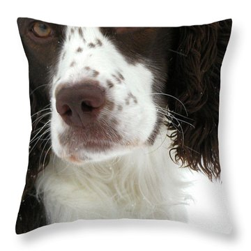 Regal  Throw Pillow by Angie Rea