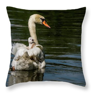 Regal Cygnet Throw Pillow