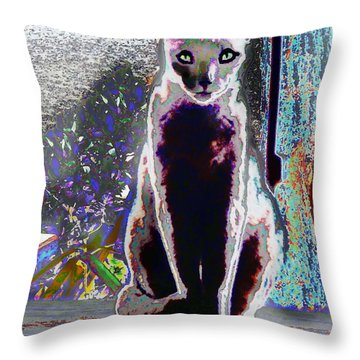 Regal Puss Throw Pillow by Expressionistart studio Priscilla Batzell