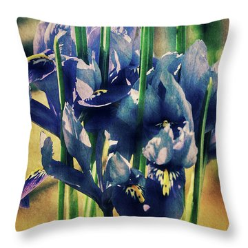 Throw Pillow featuring the photograph Regal Splendour  by Connie Handscomb