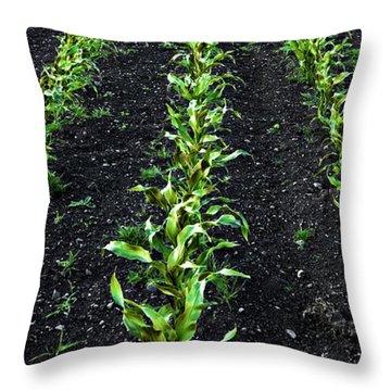 Regiment Throw Pillow