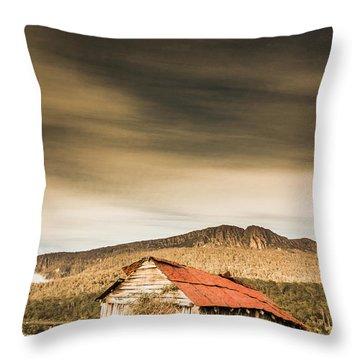 Regional Ranch Ruins Throw Pillow