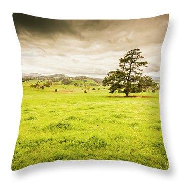 Regional Rural Land Throw Pillow