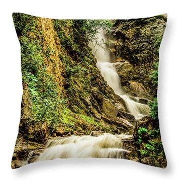 Reid Falls Throw Pillow