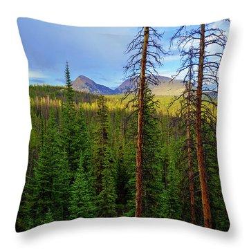 Reids Peak Throw Pillow by Chad Dutson