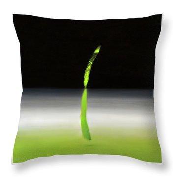 Relativity  Throw Pillow by Antonio Ortiz