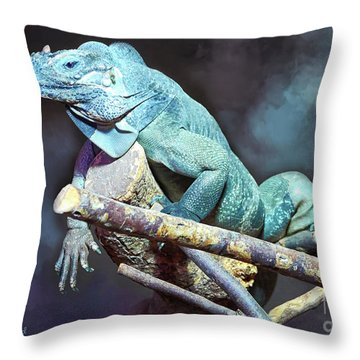 Throw Pillow featuring the photograph Relaxation by Jutta Maria Pusl