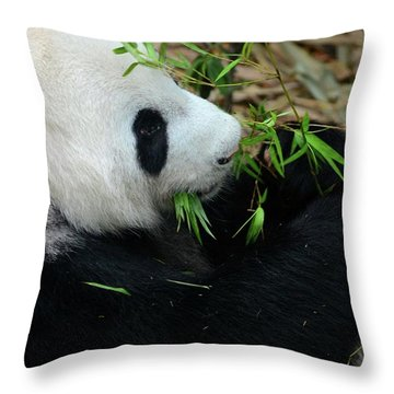 Relaxed Panda Bear Eats With Green Leaves In Mouth Throw Pillow