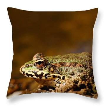Throw Pillow featuring the photograph Relaxed by Richard Patmore
