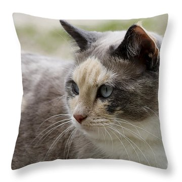 Relaxed Throw Pillow by Teresa Zieba