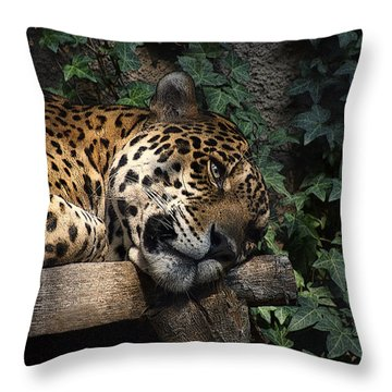 Relaxing Throw Pillow by Ernie Echols