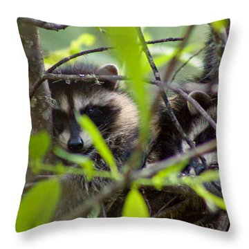 Relaxing In A Tree Throw Pillow