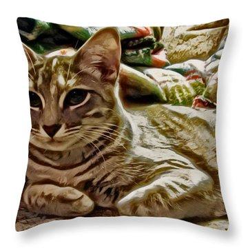 Relaxing Miyu Throw Pillow by David G Paul